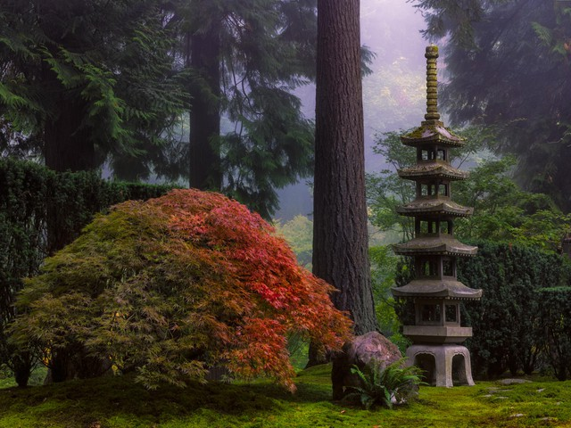 Set against the deep green and mist of a Douglas fir forest, the Sapporo Lantern commemorates Portland's sister city relationship with the Hokkaido capital.