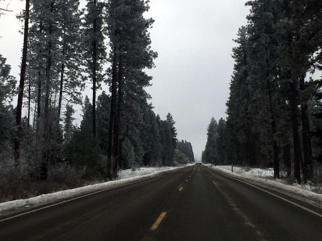 The Colville National Forest provides opportunities for hiking, hunting and recreation, but locals in Northeastern Washington complain about lack of access and declining forest health.