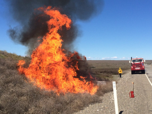Hanford fire crews burn built-up brush along a roadway in preparation for a more-challenging-than-usual fire season.