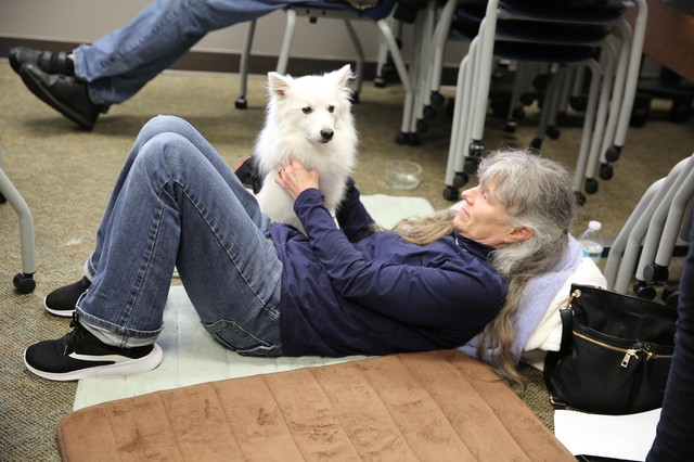 Kelly Howard attends a recent state meeting on treating chronic pain. To avoid exacerbating her pain, she lies on the floor at the back and brings her support dog, Kenta.