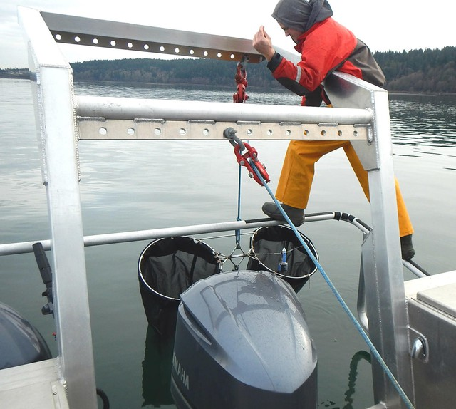 """Nisqually Tribe biologist Jed Moore lowers a """"bongo"""" net to sample plankton in Puget Sound."""