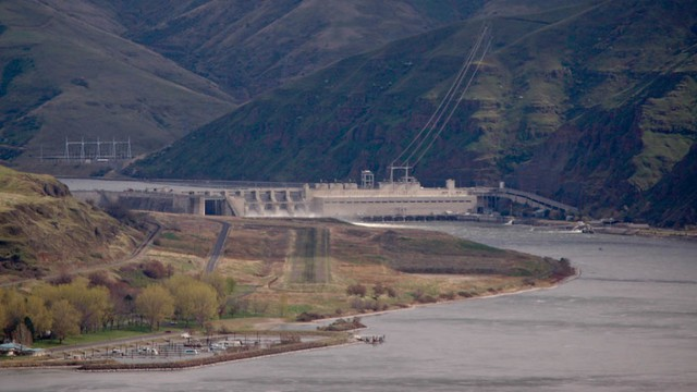 The Snake River dams are facing renewed scrutiny because of a court-ordered analysis on how the dams are harming salmon.