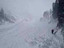 An avalanche debris field in the Mount Hood Meadows ski area.