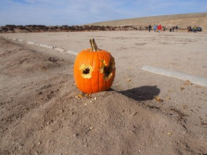 A pumpkin with bullet holes at the Idaho Automatic Weapons Collectors' Association annual pumpkin shoot at Black's Creek Public Shooting Range east of Boise, Idaho.
