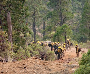 A 20-person contract crew from Eugene, Oregon,working the Klondike Fire on Aug. 9, 2018, builds a fire line from Illinois River Road toward the river itself.