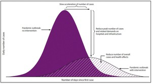 The solid-colored purple curve represents the number of cases over time without intervention. The diagonal-striped curve represents the number of cases over time if protective measures are taken.