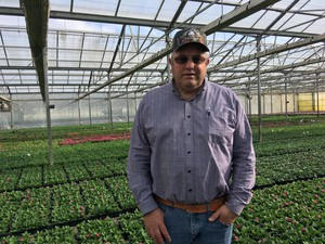 Woodburn Nursery and Azaleas owner Tom Fessler has 100 acres of greenhouses at his Oregon farm.