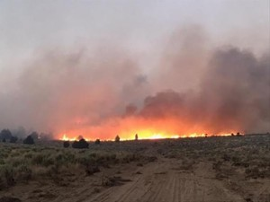 The Cinder Butte Fire on Aug. 5, 2017.