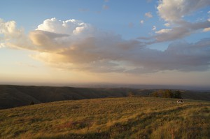 Canyon grasslands in the Northwest.