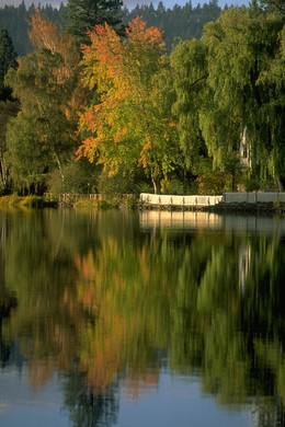 Bend's Mirror Pond in early autumn.