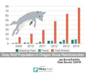 The growing wolf population in Oregon.