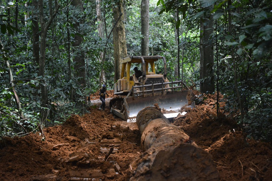 A bulldozer opening a secondary logging road in a tropical rainforest in Gabon.