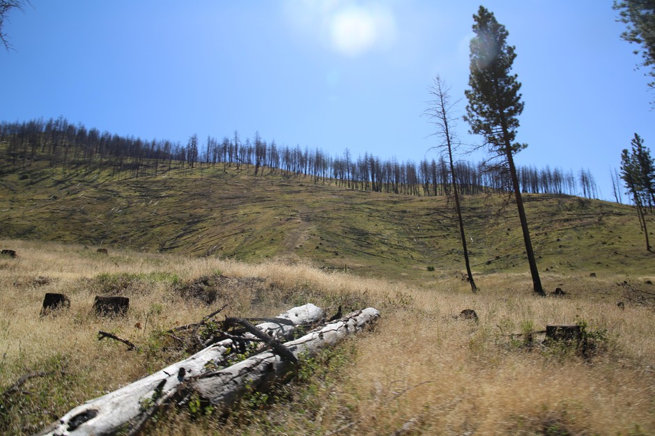 A view from Gordon Larson's ranch, which burned in the 2015 Canyon Creek Fire.