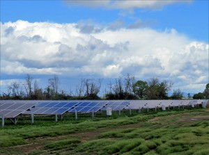 A former grass seed field alongside I-5 just south of Woodburn, Oregon, now hosts this commercial solar array, which was installed last fall.